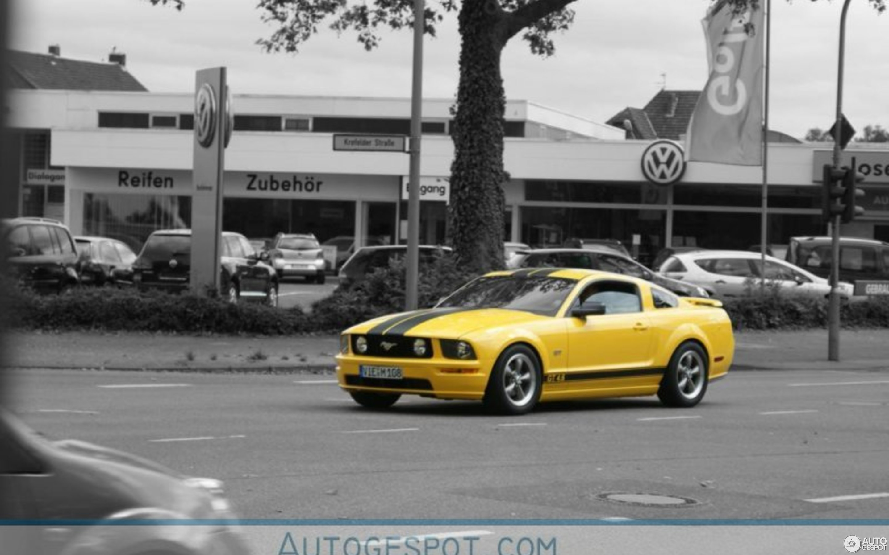 Ford mustang gt 4 6 high performance